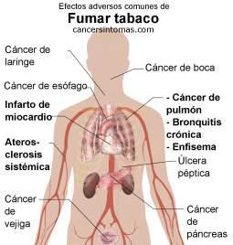 efectos de fumar tabaco